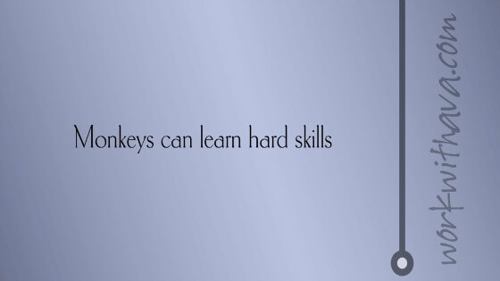 Monkeys can learn hard skills
