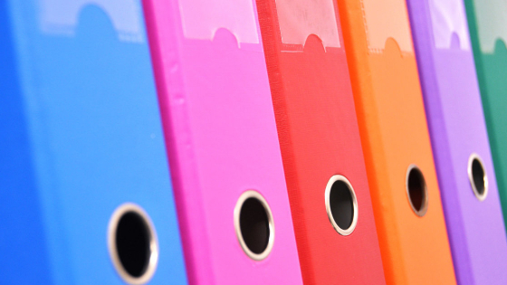 row of brightly colored file folder albums